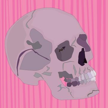 Pink Skull, Vector Drawing
