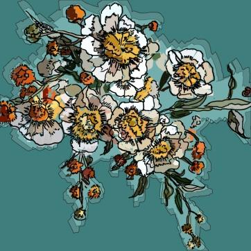 White Flowers, Digital Drawing