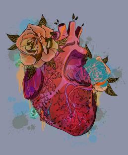 transplant_heart
